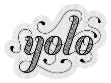 yolo_dribble