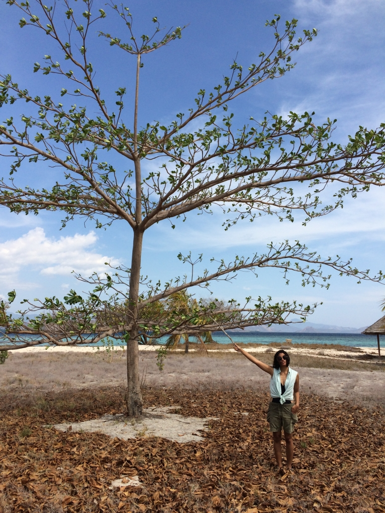 Panas  bet di Kanawa. Foto bersama pepohonan kering