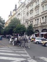 Ingin berasa kembali ke jaman lampau, bisa mengelilingi kota dengan kereta kuda