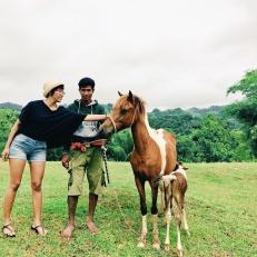 Takut takut megang kuda